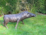 Picture of a warthog sculpture by Rosie Sturgis